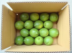 画像1: 無農薬グリーンレモン