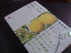 画像1: 虫たちと作った世界で一つだけのレモン