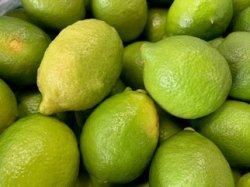 画像2: 自然栽培レモン