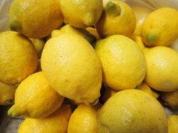 画像1: 自然栽培レモン